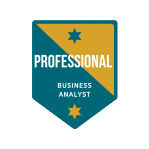 Professional Business Analyst